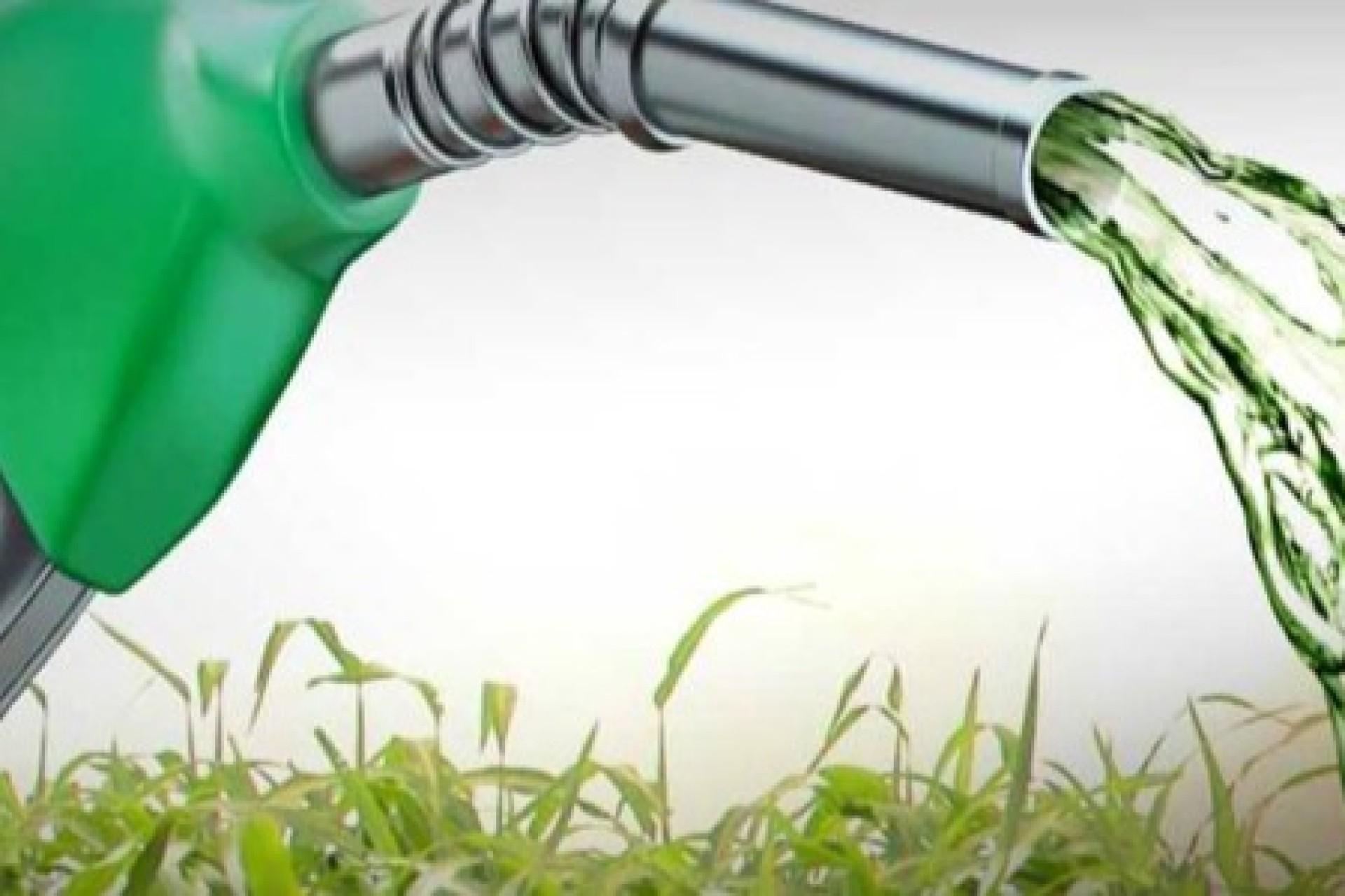 Decreto regulamenta compra e venda direta de etanol em postos de combustíveis