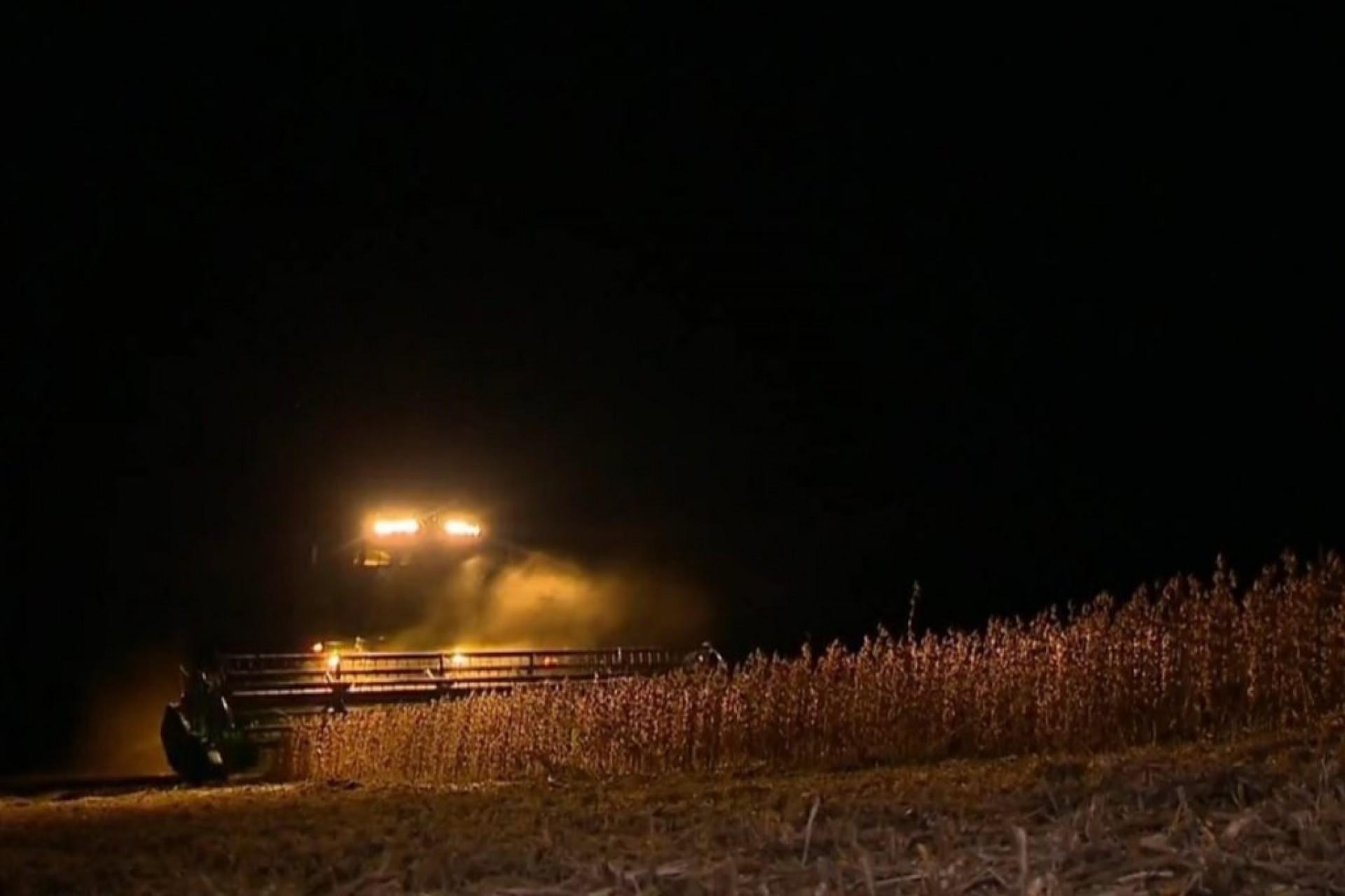 Ladrões fazem a colheita de soja durante a madruga