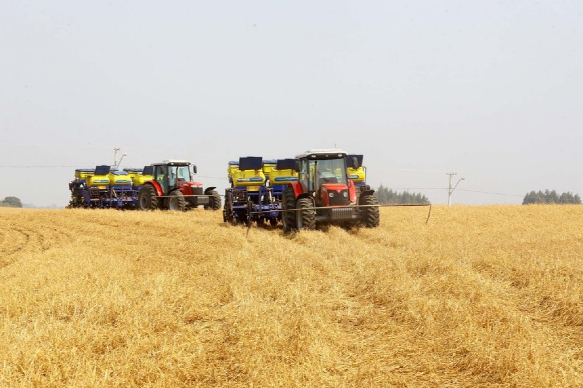 Paraná prorroga prazo para o plantio da soja