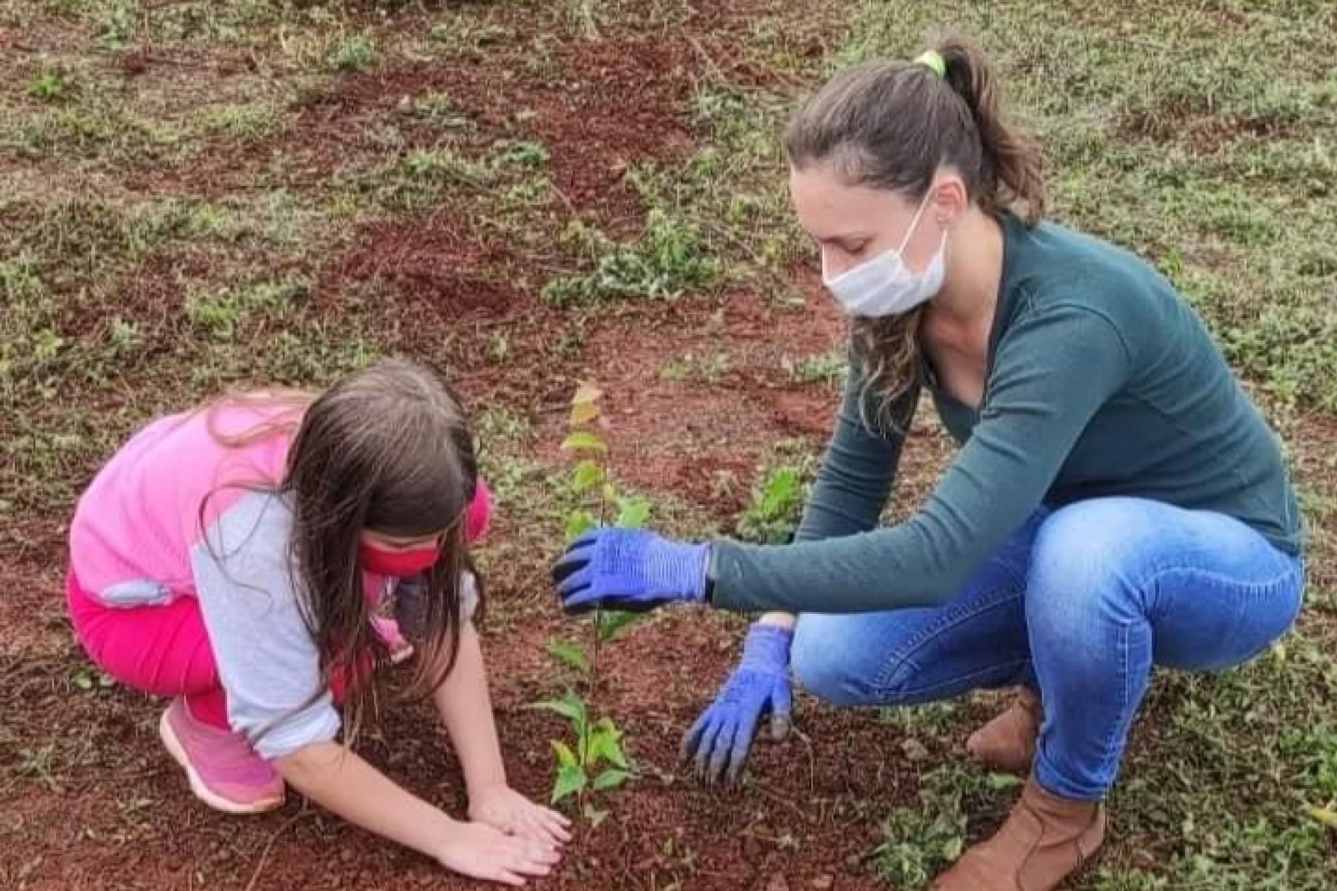 Plantio de mudas de Árvores nativas e Frutíferas ocorre próximo ao Lago Municipal