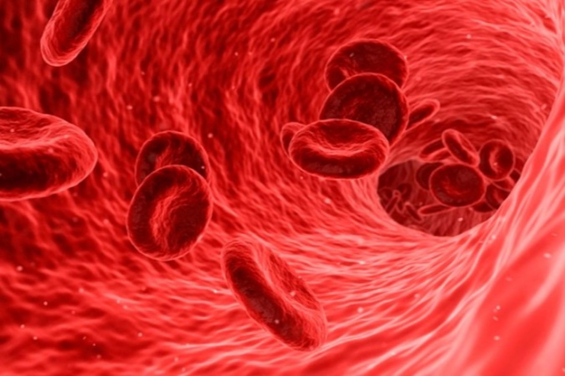 Unicamp vai testar eficácia da transfusão de plasma no tratamento da Covid-19