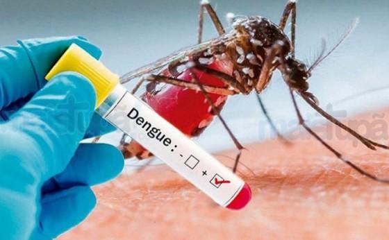 Casos Positivos de Dengue chegam a 280 em Missal