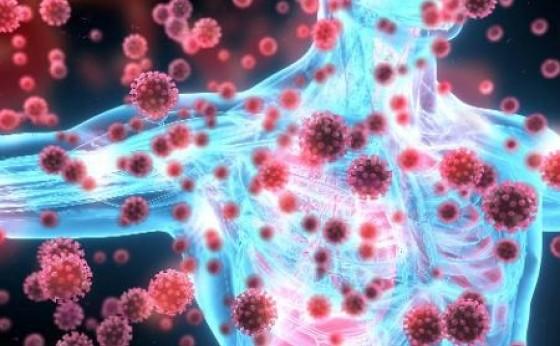 Covid-19: São 38 casos ativos da doença em Missal