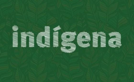 Força-tarefa reforça ações de proteção aos indígenas da aldeia Ocoy