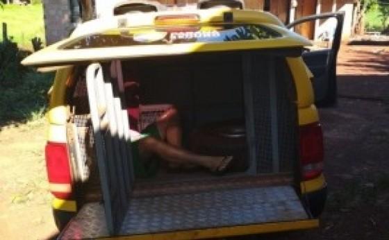 Homem tenta se esconder em bananeiras, mas é preso pela PM no interior de São Miguel