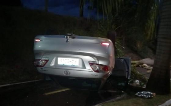 Jovem capota veículo ao arrancar coqueiros na PR 495