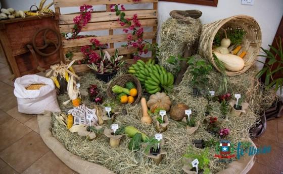 Missal sediou Feira de Agrobiodiversidade e Culinária Agroecológica