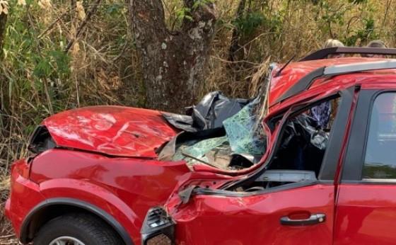 Motorista morre após colidir com veículo em árvore na PR 495