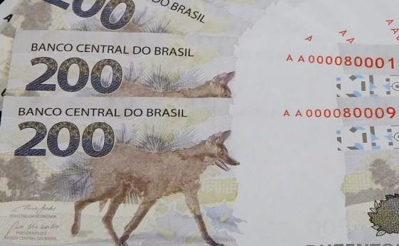 Nota de R$ 200: um ano depois do lançamento, lobo-guará está desaparecido