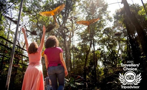 Parque das Aves recebe o prêmio Traveller's Choice 2021, do TripAdvisor