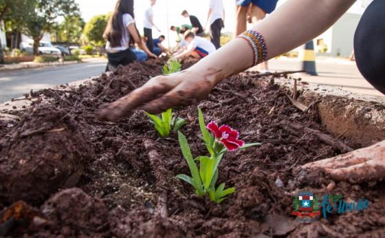 Plantio de flores e distribuição de mudas de árvores nativas marcam o dia  da árvore em Missal