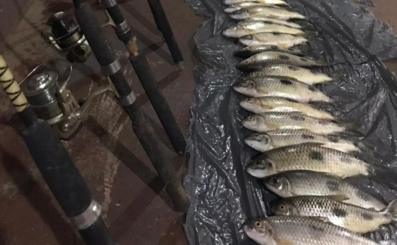 Polícia Ambiental prende homens por pesca durante a piracema