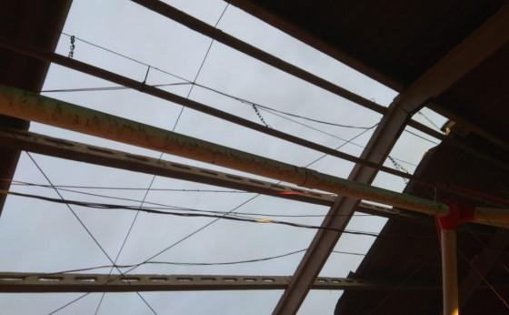 Temporal causa prejuízos em propriedades rurais de Vista Alegre em Missal