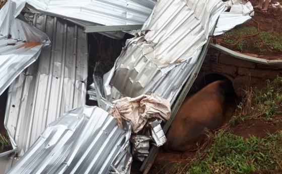 Tornado atinge propriedade rural e causa estragos e morte de animais Serranópolis